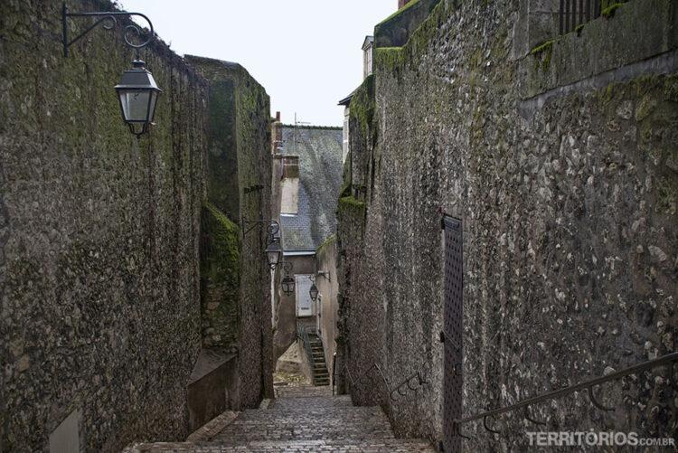 Ruela em Blois