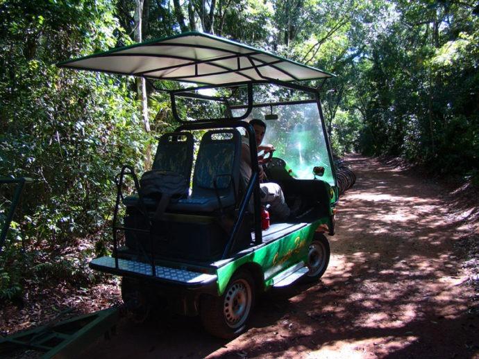 Transporte na trilha