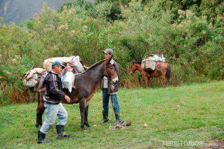 Mochilas levadas por burros durante o trekking no Vale do Pati