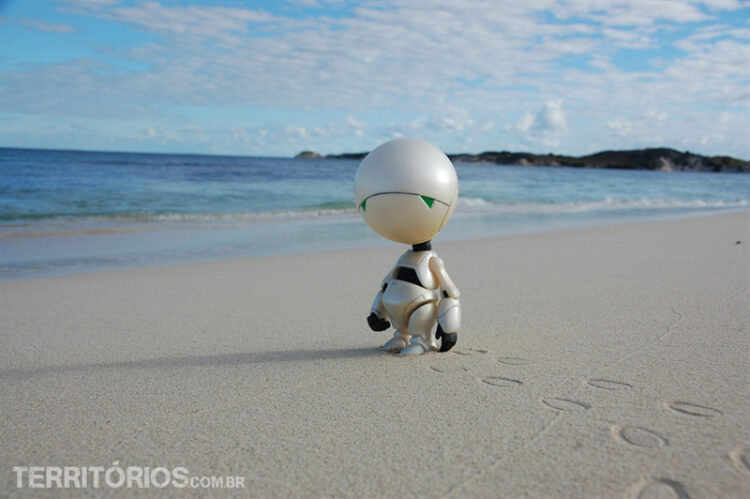 Ele começou a gostar de Oceanos