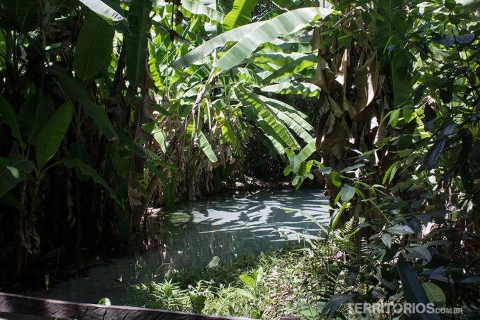 Glorinha, um dos fervedouros do Jalapão