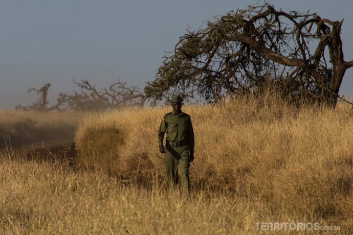 contador de rinocerontes