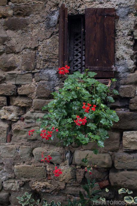 Janela florida em borgo