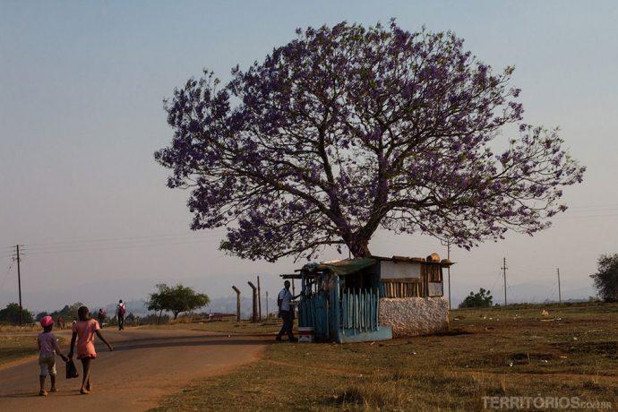 fotos da Suazilândia