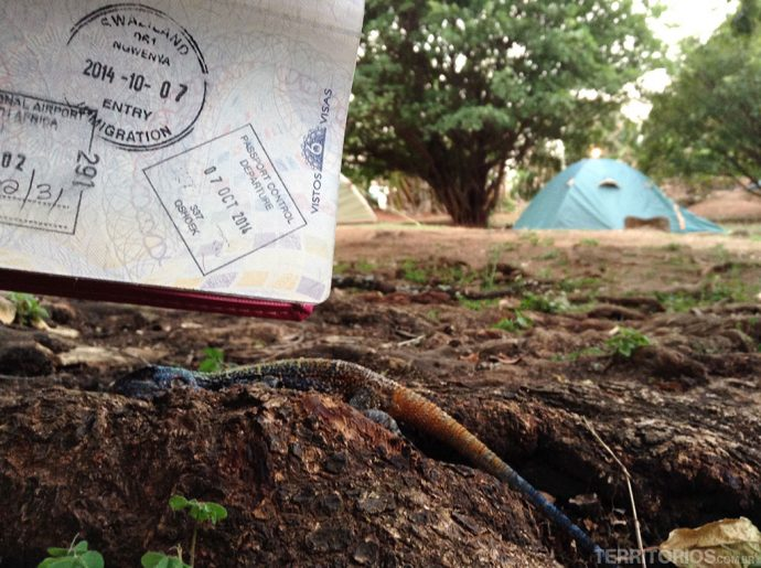 O carimbo de entrada na Suazilândia clicado na área de camping no hostel