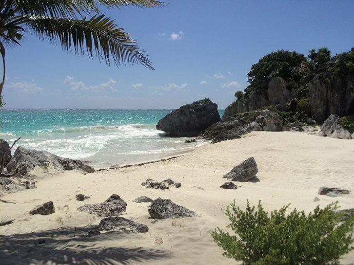 Berçário de tartarugas na Riviera Maya