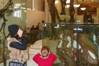 Esqueleto de um Rex no Museu Americano de História Natural