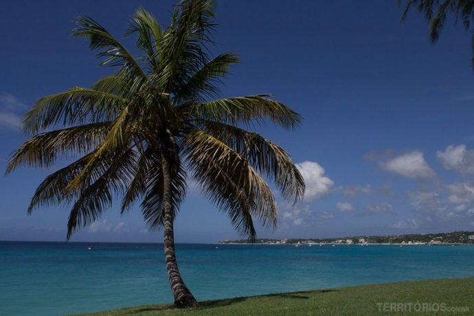 Cenário das melhores fotos de Barbados