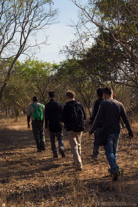 Safari a pé na reserva Guerney