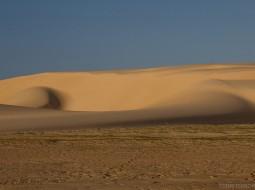 O ventro cria belas formas nas dunas