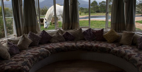 Guest House ou guest farm na África do Sul