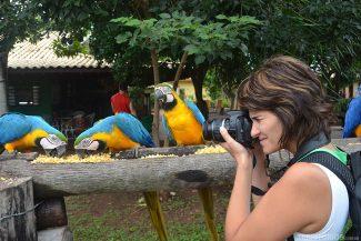 Roberta registra ararás canindé durante o Safari fotográfico no Pantanal