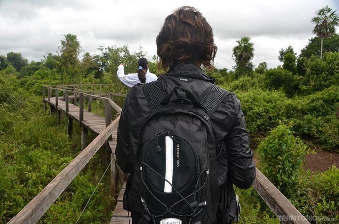 Pantanal no Estado do Mato Grosso do Sul