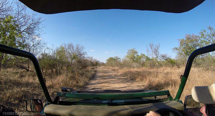 Vista de dentro do jipe na África do Sul