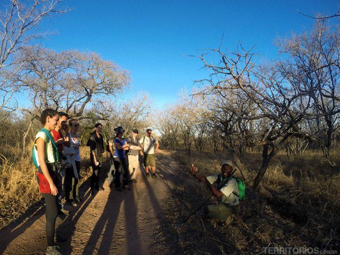 Safari a pé na África do Sul