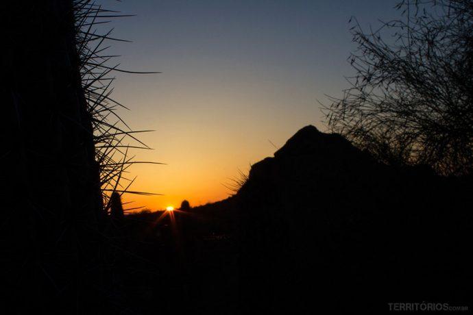 O pôr do sol no jardim botânico do deserto