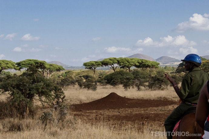 O guia, um formigueiro gigante e a paisagem