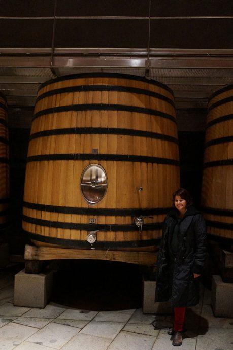 Tour pela vinícola Lapostolle