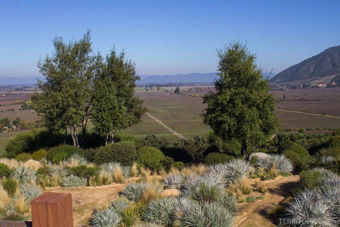A vista para o jardim e vinhas do Vale do Colchagua da casa principal