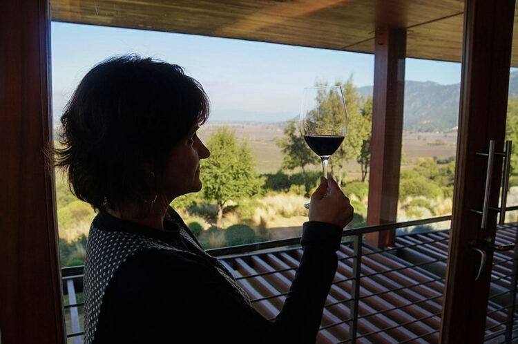 Preparei o meu vinho neste visual