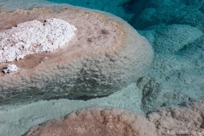Textura de sal imerso