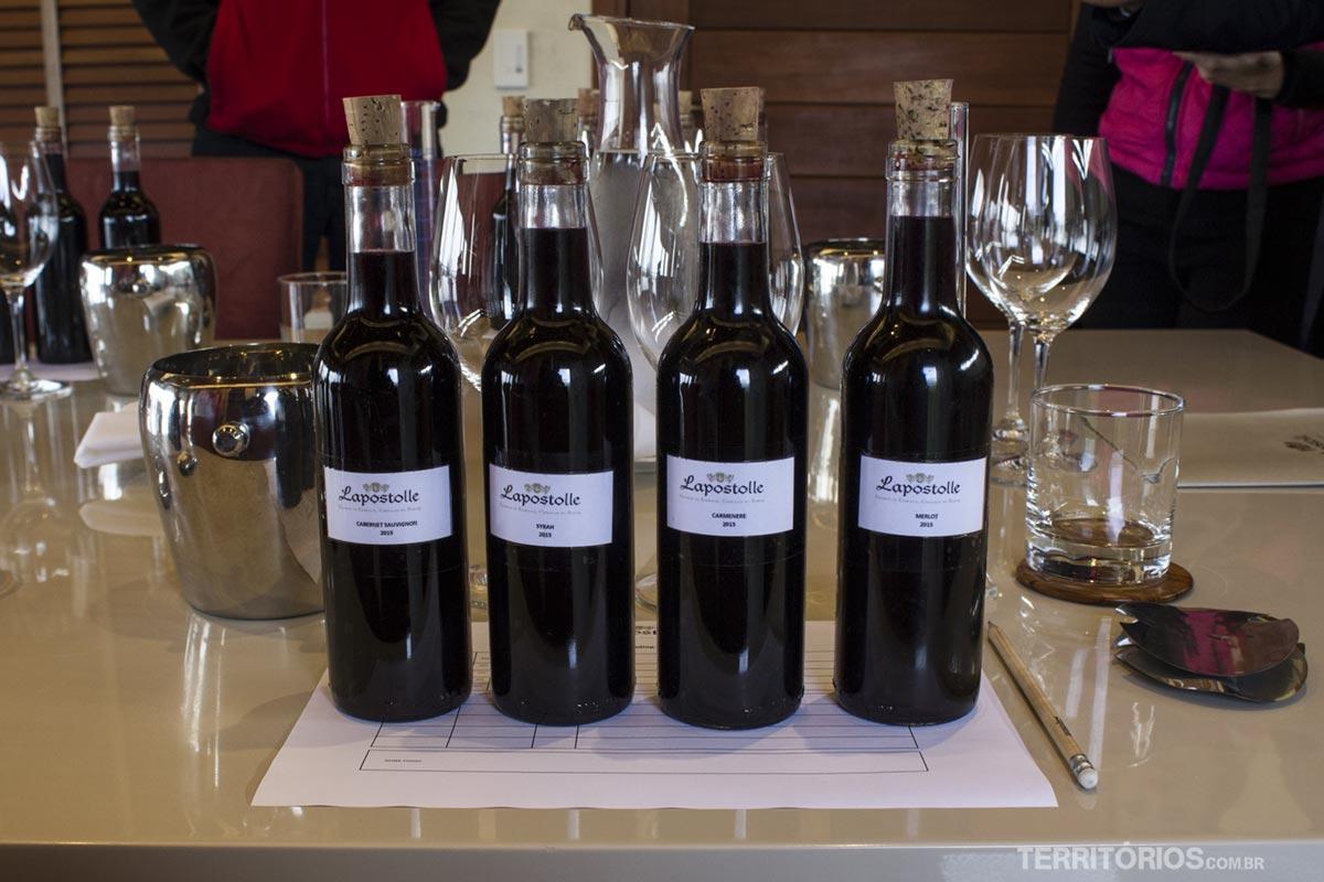 seu vinho Lapostolle