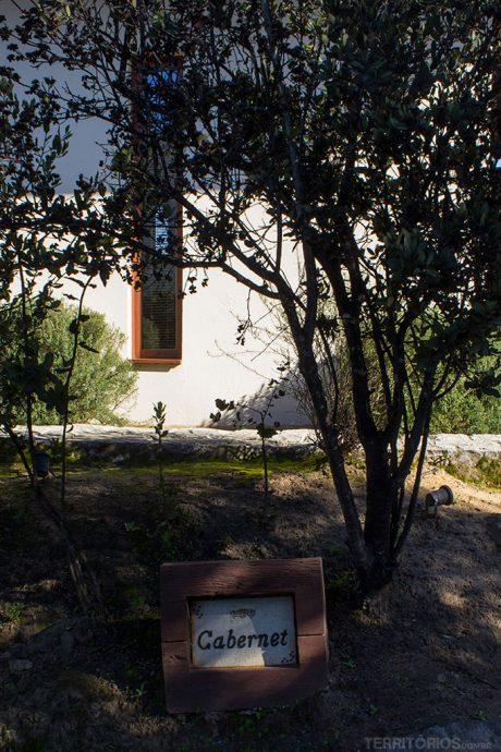 Frente da cabana Cabernet