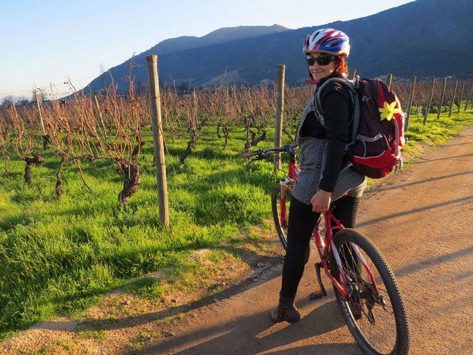 Tour de bicicleta pelos vinhedos do Vale do Colchagua