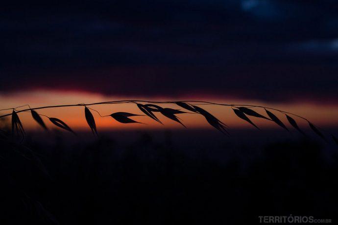 Silueta ao pôr do sol