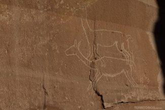 Arte rupestre na Quebrada de Quezala