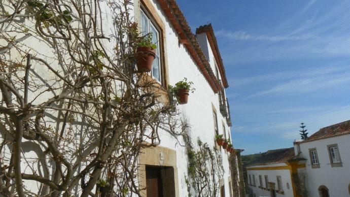 Flores nas janelas de Óbidos