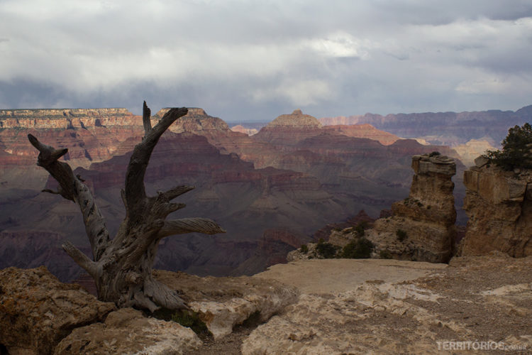 Dicas, paisagens e o lado histórico do Grand Canyon