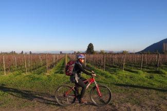 Bicicleta e vinho quente