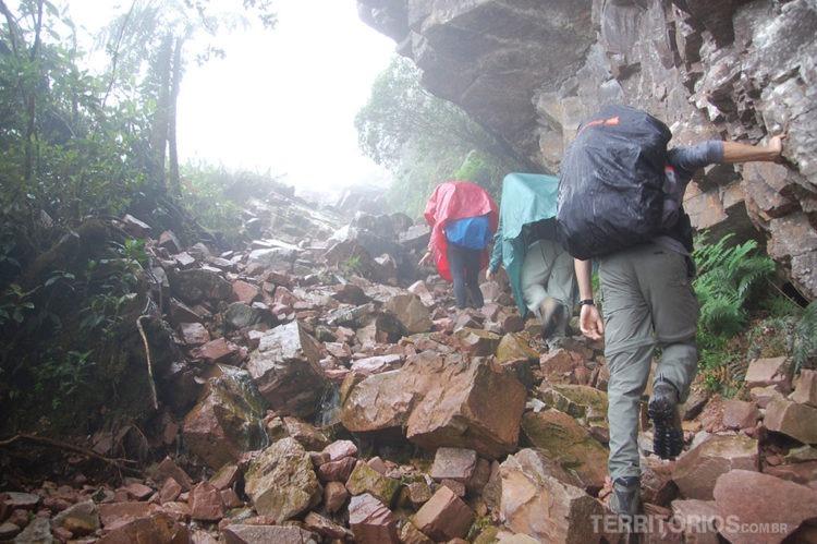 subir o Monte Roraima