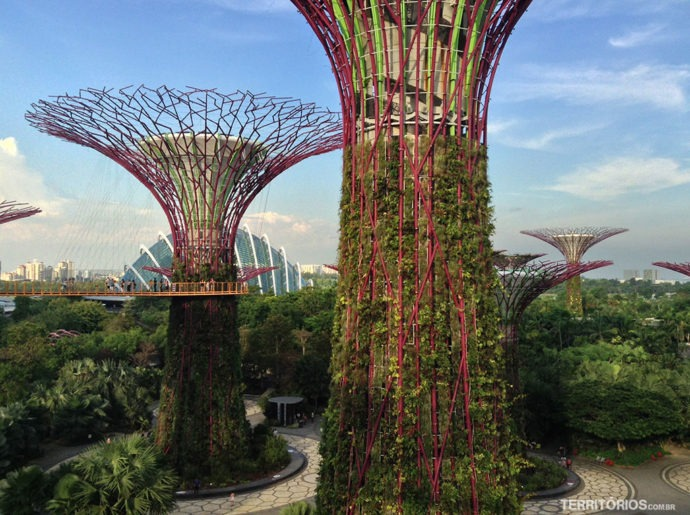 Supertrees no Gardens by a the Bay