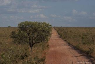 Estradas vermelhas do cerrado