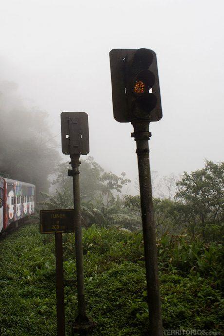 Viagem de Trem Curitiba - Morretes