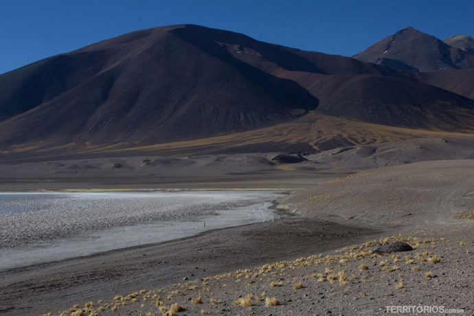 Lagunas Altiplanicas, no Deserto do Atacama