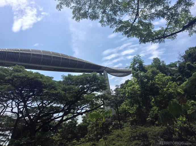 Singapura: roteiro Ponte Henderson Waves