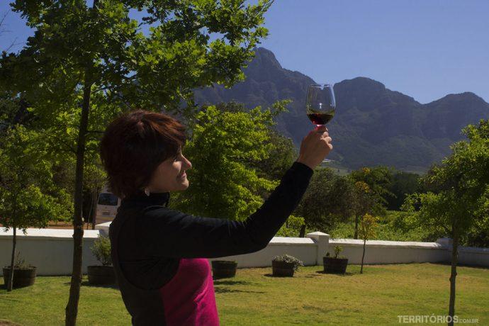 Dia de conhecer vinícolas em Stellenbosch em bate e volta desde Cape Town