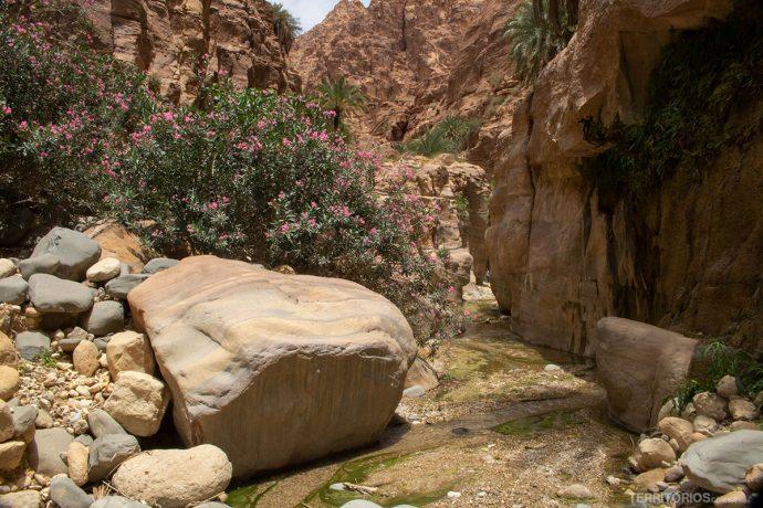 Trilha no interior de Wadi El Ghuweir