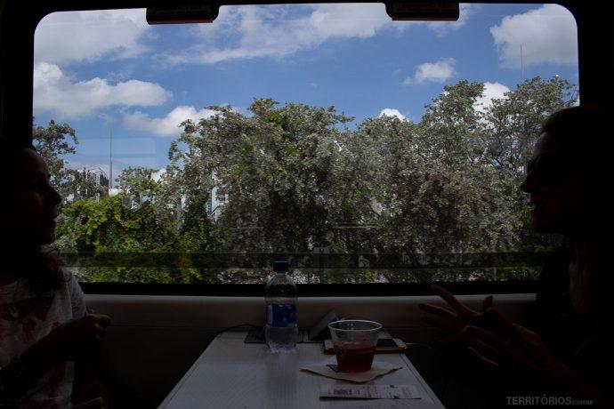 Vista verde da janela do Brightline