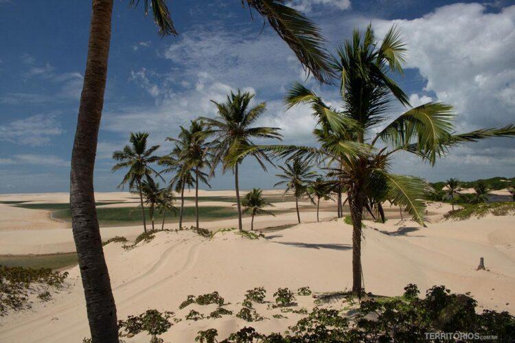 Tutóia Maranhão fonte: territorios.com.br