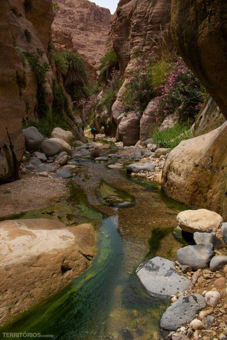Caminhos coloridos no curso do rio em Wadi El Ghuweir