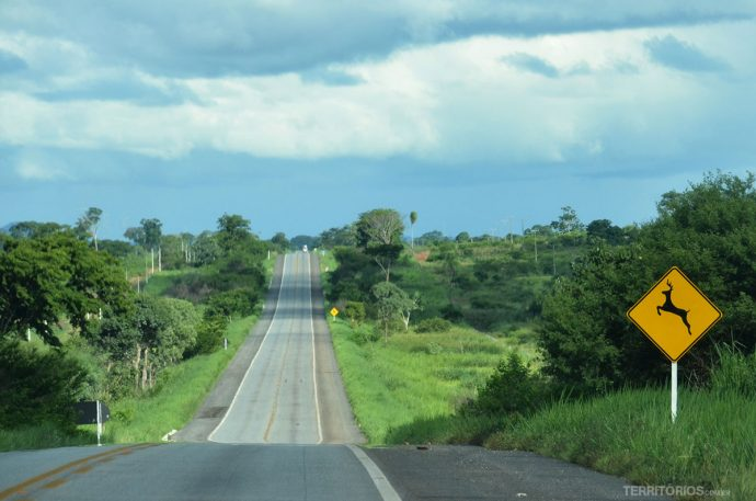 As estradas no período da chuva são verdes e de terra vermelha. É possível avistar tucanos, seriemas, araras, vacas, cavalos e outros animais nas colinas ao redor