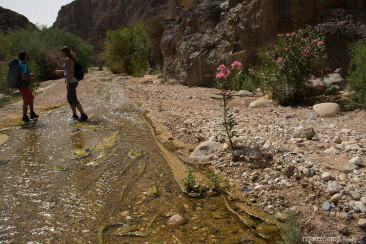 Viagens transformadoras: Jordânia